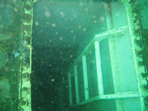 wreck diving Portugal 15